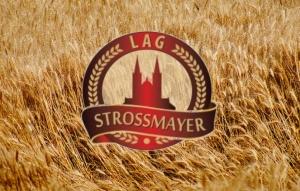 """LAG ,,Strossmayer"""" dobio 1. nagradu za izradu projektne ideje za ,,Pametna sela"""""""